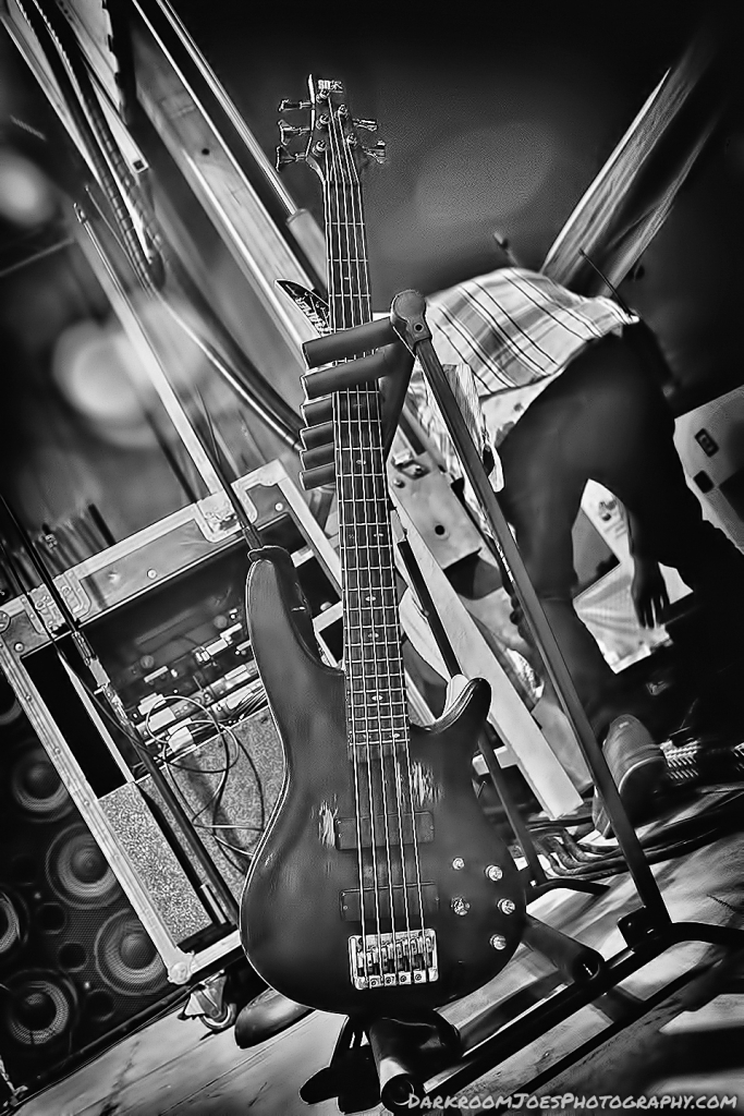 Darkroom Joe's Photography Edison Park Fest Guitar Pictures